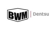 Matt Griggs Clients BWM Dentsu